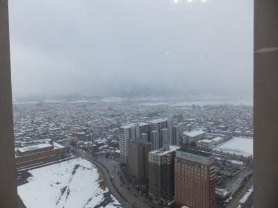 霞城セントラル22階会議窒からの眺め